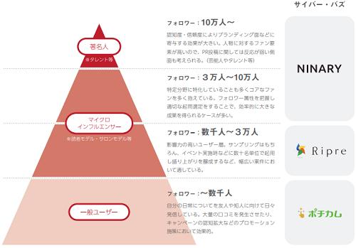 サイバー・バズのインフルエンサー区分を表した画像